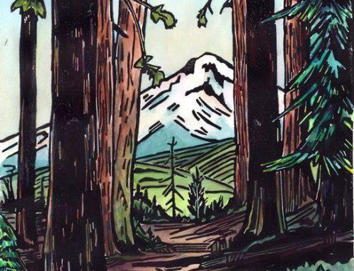 Mountain Bird Studios